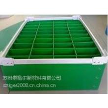 供应供应塑料周转箱/方形箱/中空板塑料箱